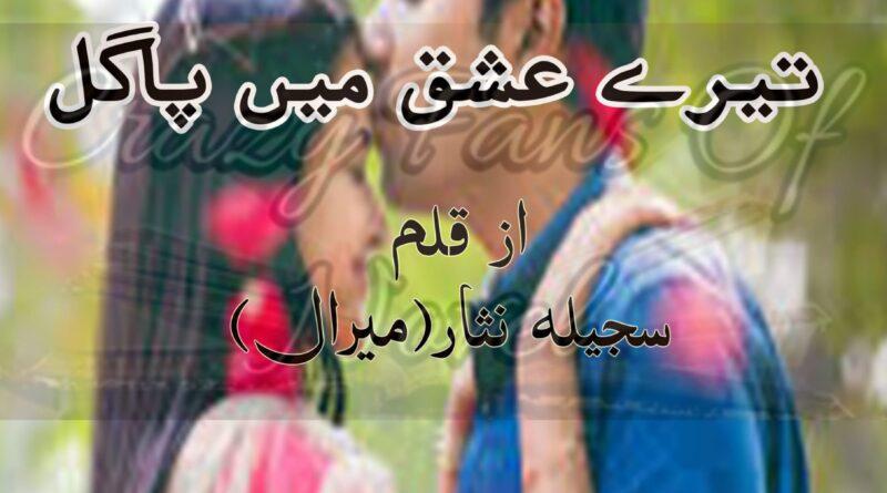 Tery Ishq Main Pagal By Sajeela Nisar Meraal-min