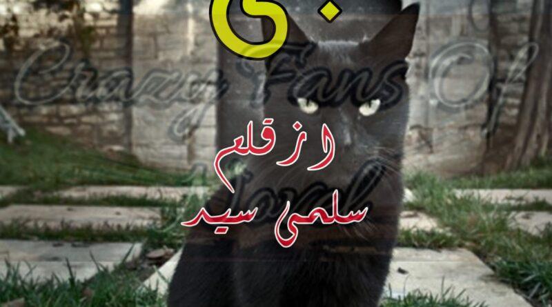 billi by salma syed