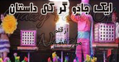 ek jadughar ki dastan by mian Fazeehat