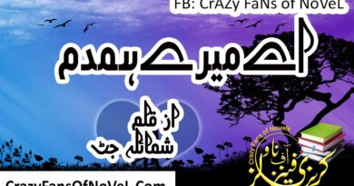 Ay Mery Hamdam By Shumaila Jutt Complete Novel