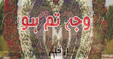 Wajha Tum Ho By Malisha Rana (Complete Novel)