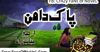 Pak Daman By Hijab Rana Complete Novel