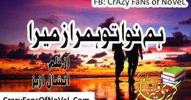 Hum Nawa Tu Hum Raaz Mera By Nishaal Aziz (Complete Novel)