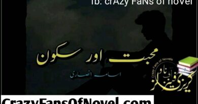 Mohabat Or Sakoon By Usama Ansari (Complete Novel)