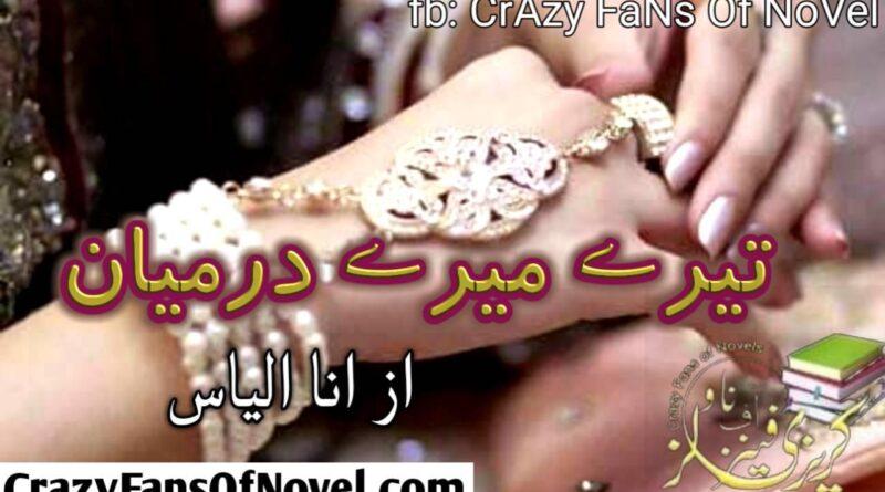 Teray Meray Darmiyan By Ana Ilyas (Complete Novel)