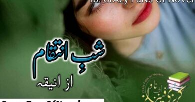 Shab e Inteqam By Novelist Aniqa Complete Novel