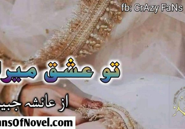 Tu Ishq Mera By Ayesha Jabeen (Compleat Novel)